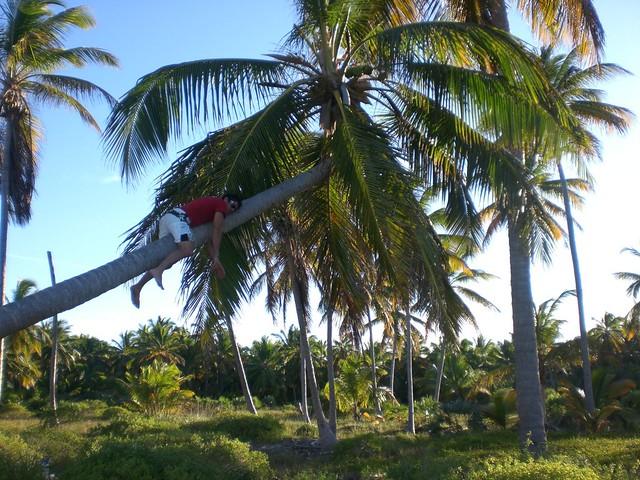 Sobretodo no olvidar que aquí uno viene a relajarse ... y a disfrutar de éste paraíso terrenal Punta Cana - 2510671537 edc63ee571 z - Punta Cana, paraíso terrenal donde nace el sol