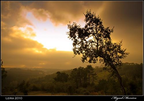 sunset portugal nature dusk natureza crepusculo leiria mygearandme mygearandmepremium mygearandmebronze mygearandmesilver mygearandmegold mygearandmeplatinum mygearandmediamond