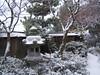 Chiba Gardens3.JPG