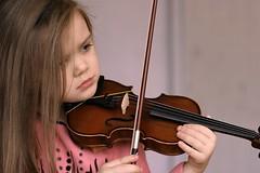 bowed string instrument, violinist, string instrument, violin, viol, viola, fiddle, violist, string instrument,