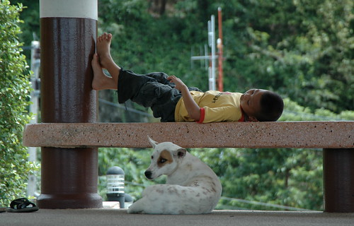 Thai child with Dog... (DSC_4197)