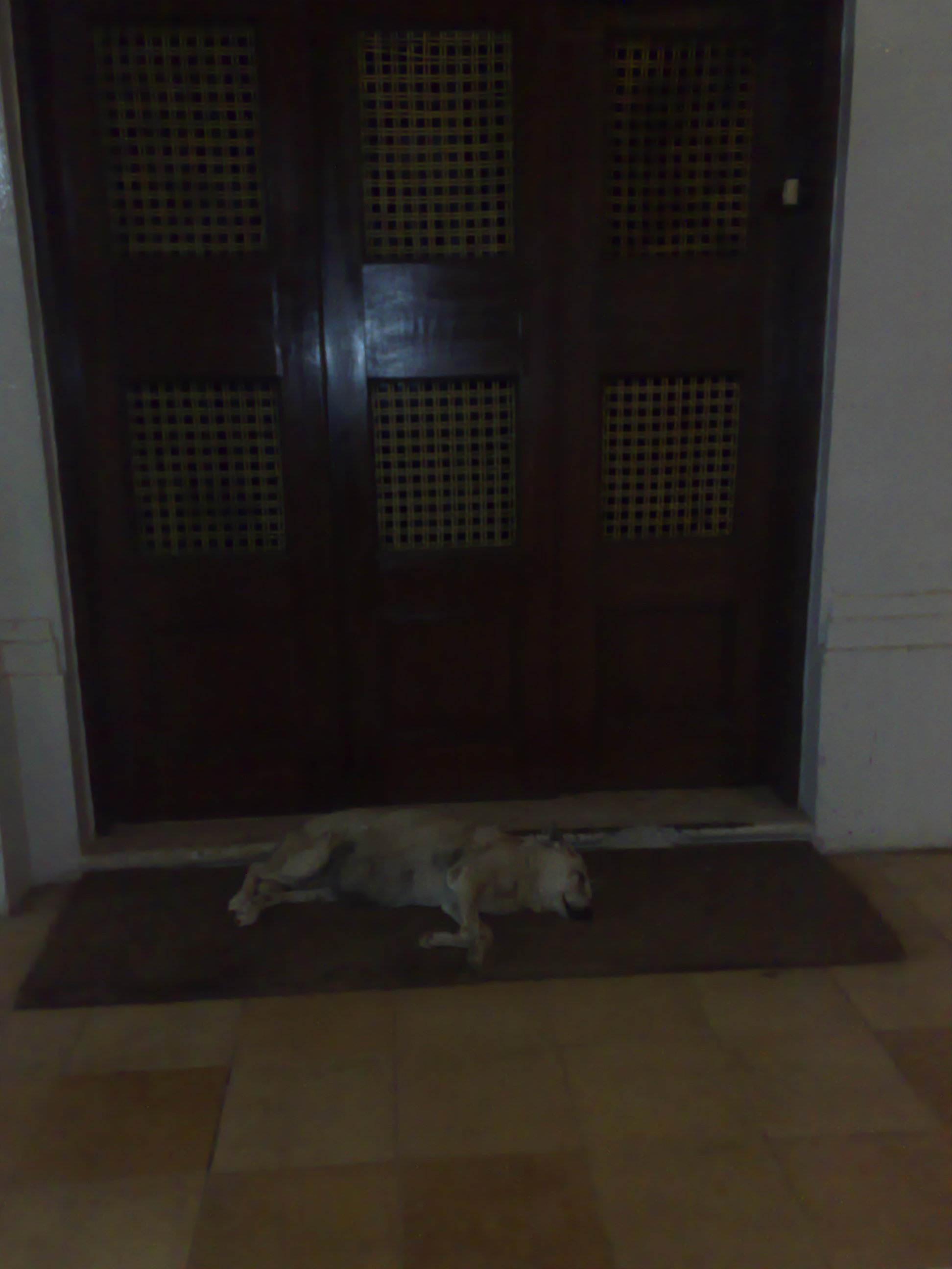 Sleeping Dogs Configuration