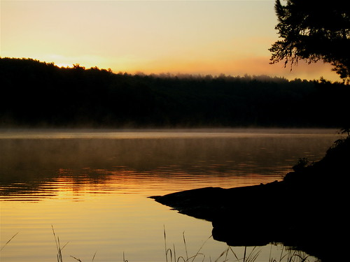lake fish nature minnesota sunrise fishing woods scenery scenic september cranelake voyageursnationalpark