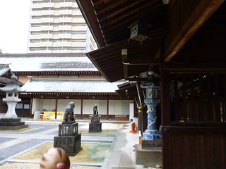 Swinub in Saga, Saga 14 (Saga shrine)
