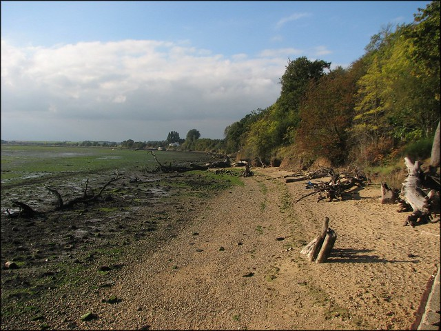 The Stour at Shotley Gate