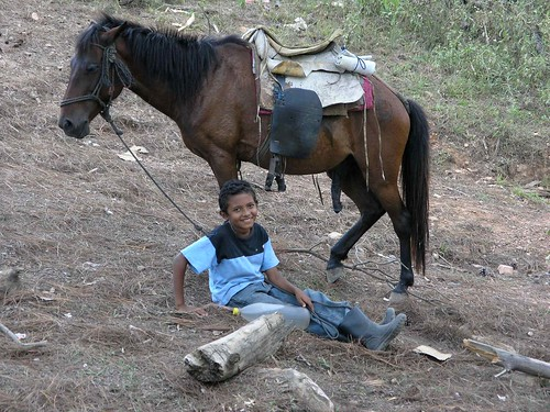 people horse latinamerica animals portraits children honduras mammals centralamerica 2007 yoro américalatina gpsapproximate