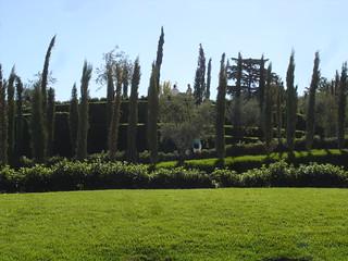 Bosque del Recuerdo 의 이미지. madrid park parque españa spain recuerdo bosque terrorism retiro espagne 11m olivo terrorismo ausentes ciprés