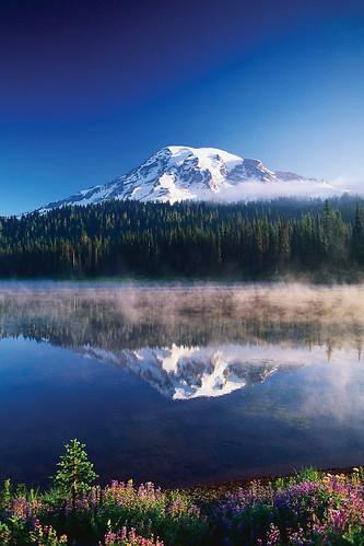 Mt. Rainier Photo - Washington