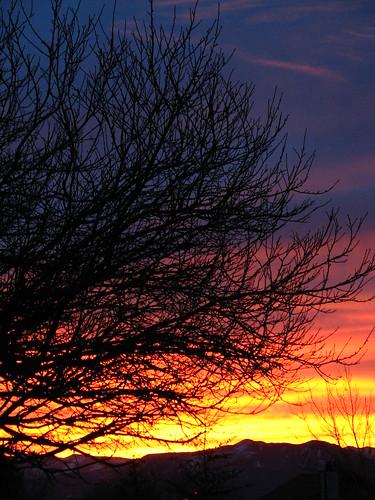 sky sunrise reno