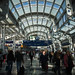 Small photo of Chicago O'Hare