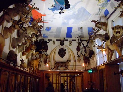 Crazy trophy room