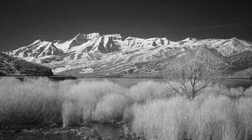 landscape scenic utah rural mountains infrared deercreekreservoir trees bushes