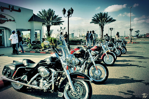 { Harley Davidson }