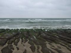 石門老梅的藻礁石槽(張育章攝)
