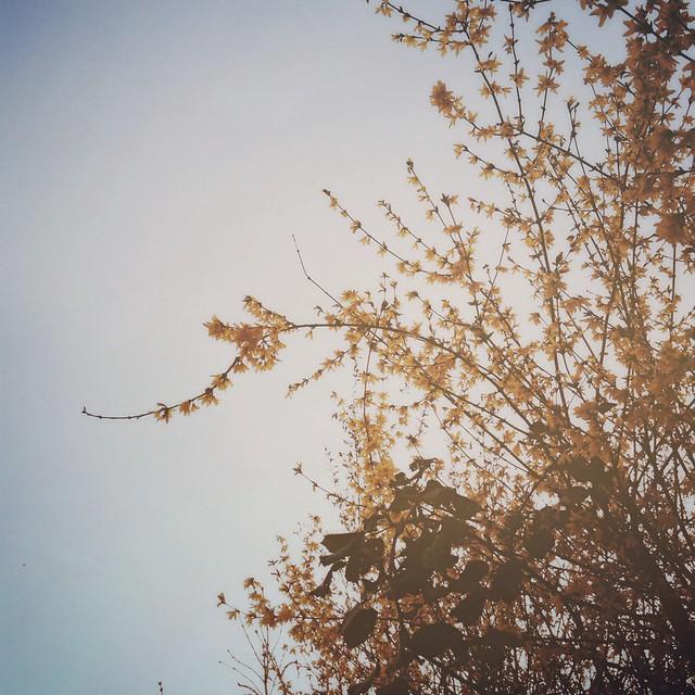 Spring. :)