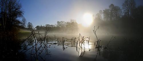lake reflection mirror winter sunrise dawn avening trees tetbury cotswolds