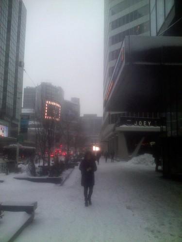 Winter snowfall, 12 March 2014 (4)