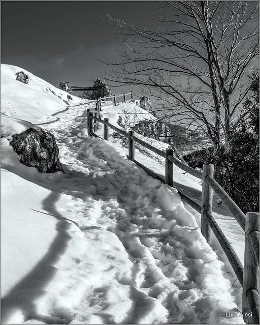 Elcito, Nikon COOLPIX P330