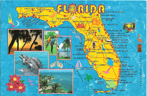 Florida map Postcard