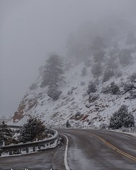 On our trip down to #southernutah we visited #brycecanyon . Unfortunately, because of the #weather , it was fogged in and couldn't see much. #Explorediscovershare #photograph #fog #road #landscapephotography #landscape #utah #utahphotography #utahphotogra
