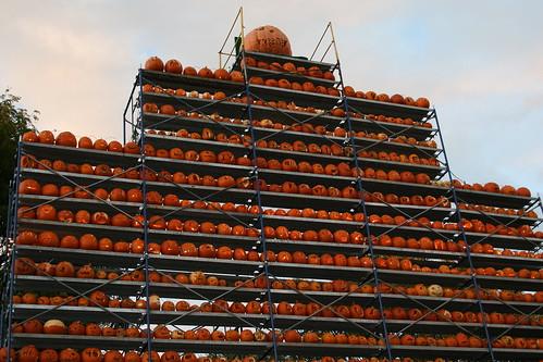 autumn fall halloween festival pumpkins newengland explore jackolanterns pumpkinfestival keenenh carvedpumpkins 102007