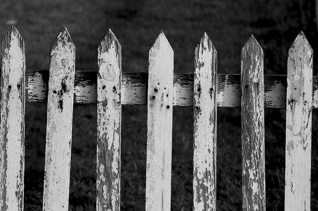 Old picket fence flickr photo sharing