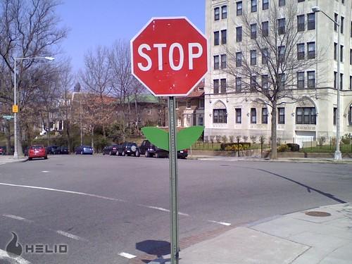 stop flower - 1600 Argonne NW
