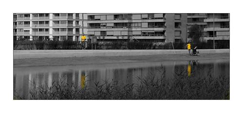 yellow urbanity