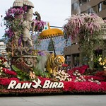 Pasadena Rose Parade 2008 01