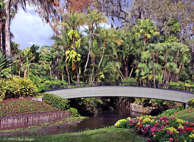 A Florida Garden