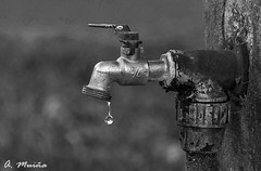 AGUA. WATER