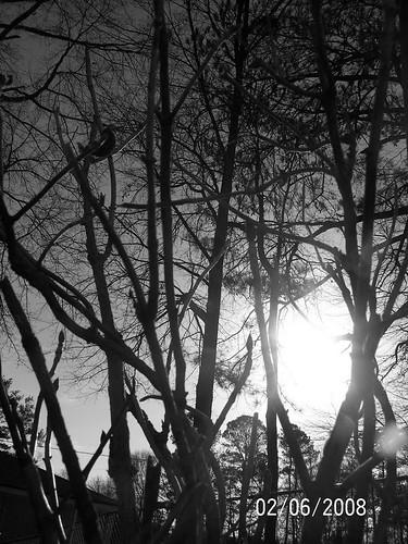 blackandwhite sunlight georgia doors shed swing rockingchairs powdersprings