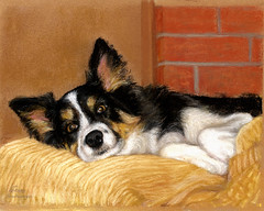 """""""Sparky in Recline"""" web version"""