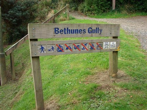 Bethunes Gully
