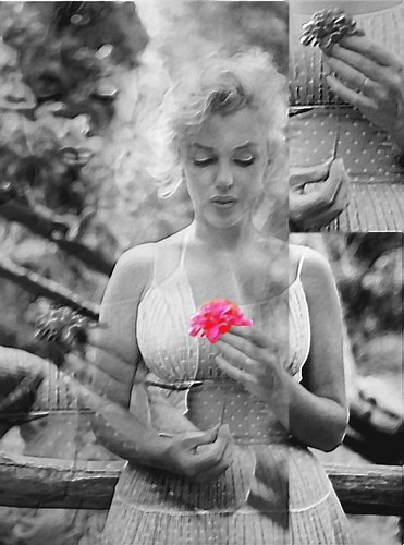 merry christmas and a happy new year wishes _m_m_ natale marilyn