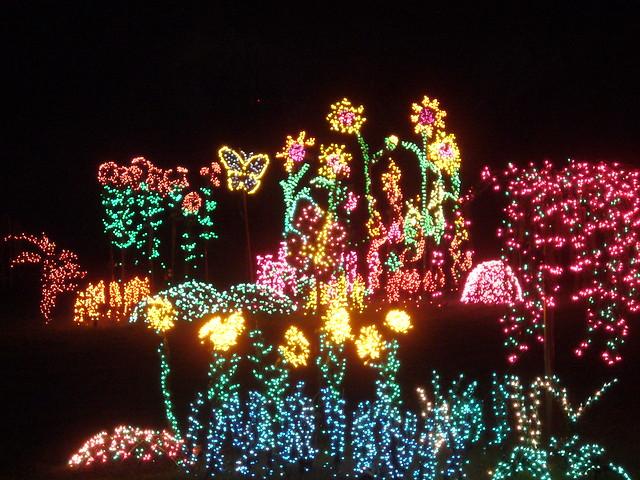 Garden d'Lights 6