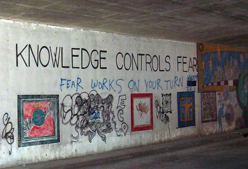 Knowledge Controls Fear inside Tunnel