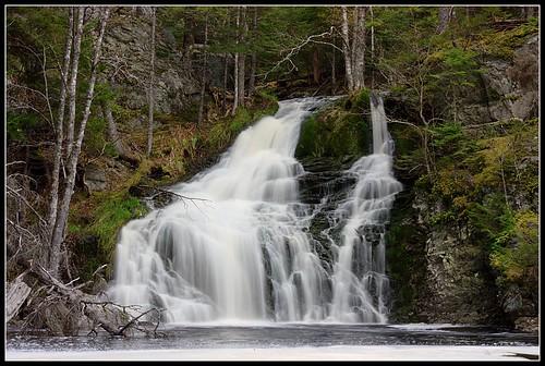 trees canada waterfall rocks novascotia panukelake geekcamp nspp hallsfalls