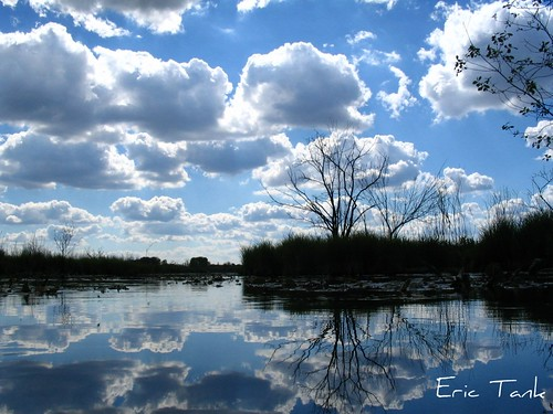 trees sky lake reflection water clouds reflexions kettlemorainesouth scuppernong naturesfinest aplusphoto diamondclassphotographer colourartaward
