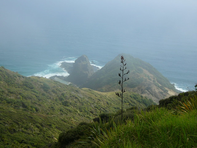 Te Rerenga Wairua, Panasonic DMC-LC70