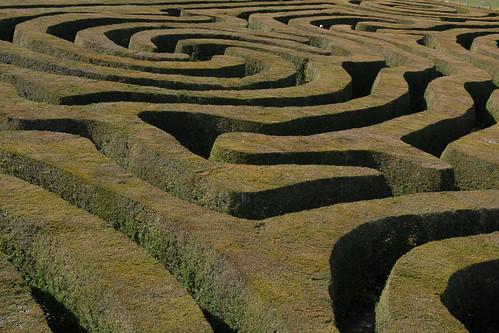 Maze by f a b