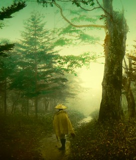 PILGRIM ON A FOREST ROAD -- Into the Mist of Old Japan | by Okinawa Soba (Rob)