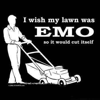 wish my lawn was emo