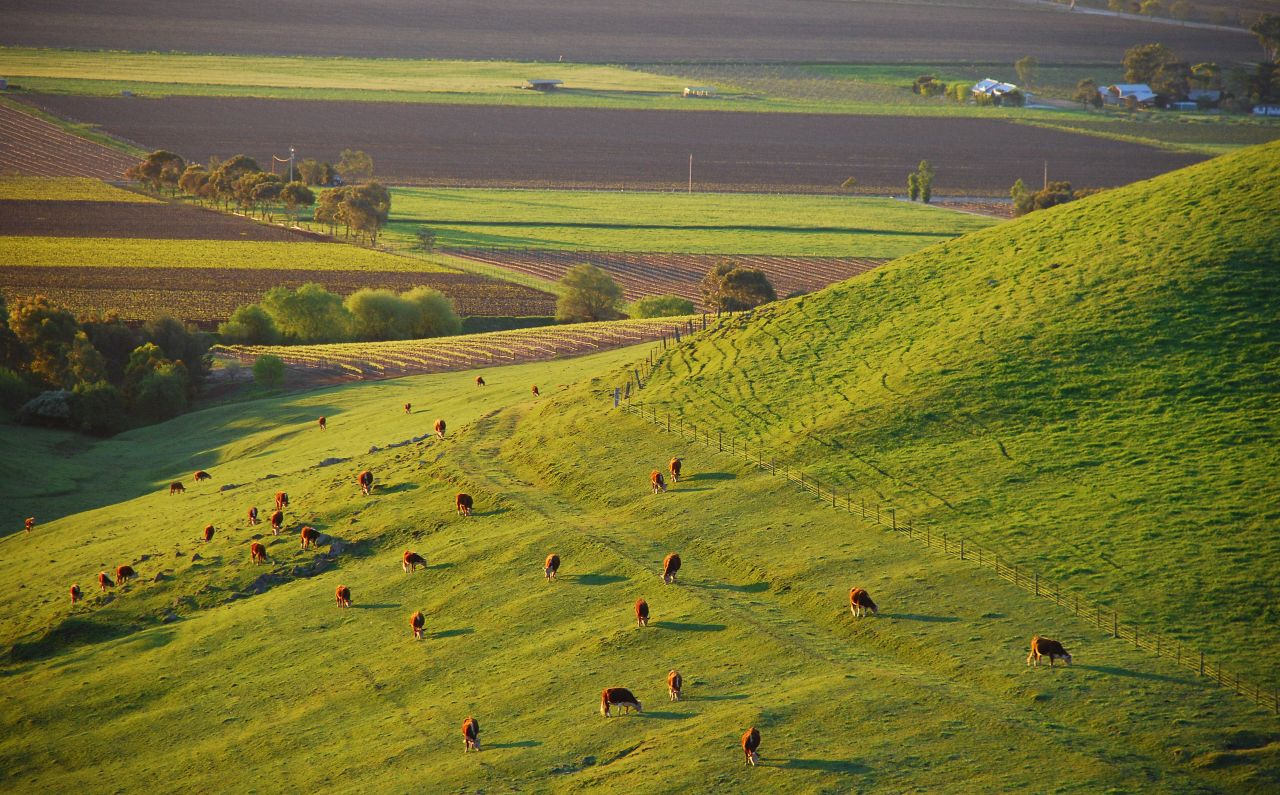 Barossa Valley South Australia