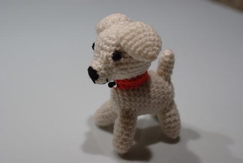 De fil en aiguille petit chien blanc - Petit chien gratuit ...