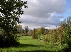 Lost campsite - Photo of Audeloncourt