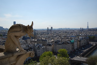 View From Cathedrale Notre Dame de Paris | by edwin.11