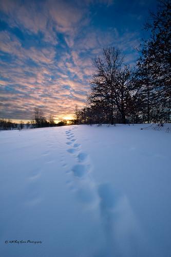 winter snow minnesota clouds sunrise lakeelmoparkreserve d3s