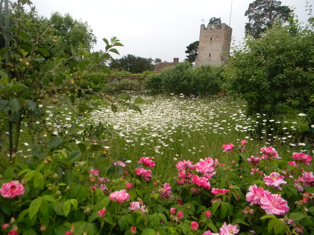 Flowers with tower Greys Court Garden. Shiplake to Henley