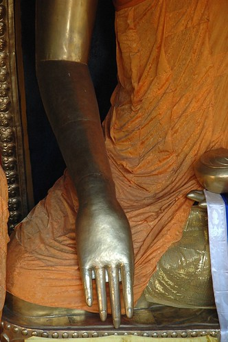 Hand and Arm of the Buddha, Mudra Calling the Earth to Witness, Tharlam Monastery, Boudha, Kathmandu, Nepal by Wonderlane
